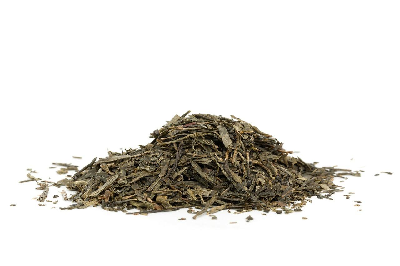 Czy zielona herbata odchudza – mit czy prawda?